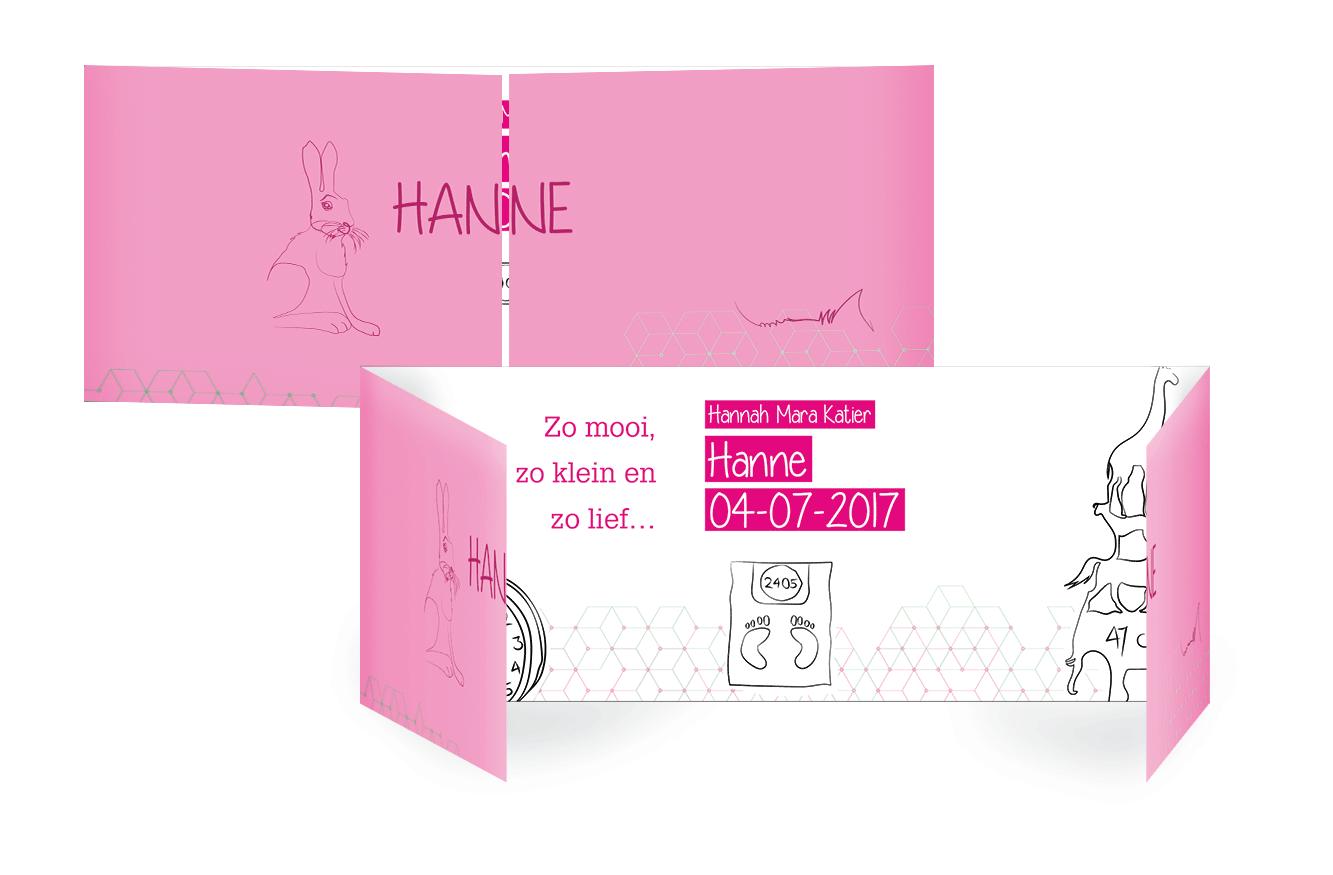 Geboortekaart Hanne